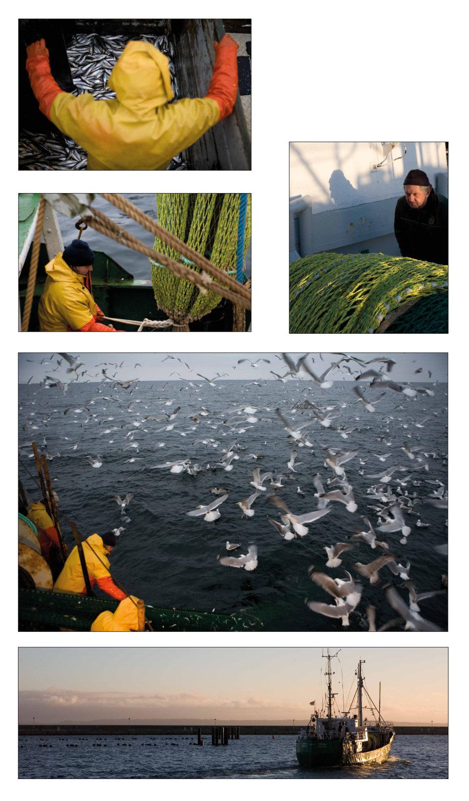 BAG NET Des Fischers Handwerk wird auf Eis gelegt B7 2020 Kuratorin Marlen Melzow